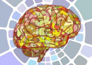 brain-growth-featured